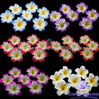 Plumeria Hawaiian Foam Frangipani Flower For Wedding Party Decoration Decor