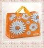 2012 PP Woven Shopping Bag