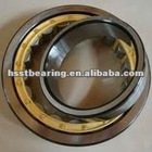 low price cylinder roller bearing single row N1005 N1006 N1007 N1008 N1009