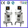 THR-US9902 3D Ultrasound Scanner with a Convex Probe