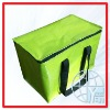 Promotion PP Woven Insulated Lunch Bags