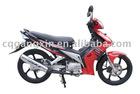Autocycle (Wujifeihu) with high cost-performance raito, 110cc