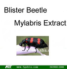 Blister Beetle Mylabris Extract