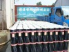 SBS elastomeric modified bitumen waterproof membrane rolls
