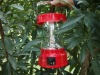 Multi-purpose Solar Rechargeable Lantern DN819