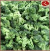 IQF Broccoli with block