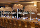 DIY Decorations Colored Ostrich Feathers for Wedding Decor