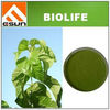 BIOLIFE-sc13 Natural Sodium Copper Chlorophyllin