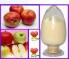 apple procyanidins