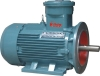 Explosion Proof Motor, Flameproof Motor, Electric Motor, Asynchronous Motor,(with IMB5 Flange)