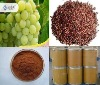 grape seed extracts/GSPE