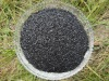 humic acid sodium