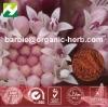 Butterbur Extract Petasites