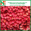Wholesale IQF frozen Strawberries All Star