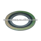 Spiral wound gasket / SWG with outer ring