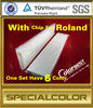 Eco Solvent Ink Cartridge For Roland SP540/300 Printer