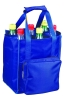2011 polyester bottle carry bag