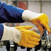 Yellow Nitrile coated gloves 201015
