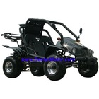 250CC/150CC Dune buggy with EEC