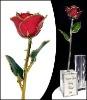 """11"""" 24kt Gold Trimmed Rose"""