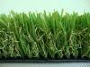 landscaping grass BNU40215140