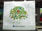 Eco Friendly Non Woven Promotional Bag