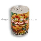 Novelty plant in can, promotional gift