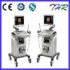 THR-US9902 Digital Ultrasonic Diagnostic System