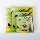 square glass dinner plate with decal