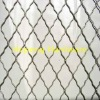 Low-Carbon Iron Wire Beauty Grid Wire Mesh Fence(Factory)