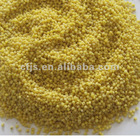 New crop yellow broom corn millet for sale or garins