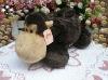 animal orangutan tissue box