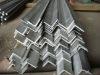 Shipbuilding equal steel angle