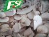 IQF champignon slice