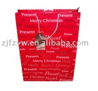 2011 Fashionable Craft Paper Gift Bag