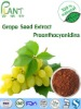 100% Natural High quality Grape Seed Extract oligomeric proanthocyanidins