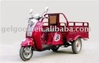 Cargo Motor Tricycle