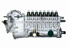 P9 8 cylinders fuel injection pump