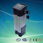 36V 16Ah Lifepo4 EV Battery Pack