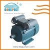 electric motor kw