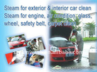 steam car cleaner with wax and detergent system