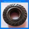 High strength Flange Head Nut