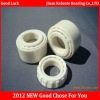 2012 Ceramic Ball Bearings