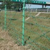 High quality razor wire fence, Barbed wire fence
