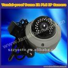 Vandal-proof Dome PLC IP IR Camera