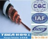 fluoroplastic insulated control cable, PVC insulated and Sheathed Control Cable,PVC control cable,armored control cable