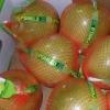 Honey honey pomelo - most welcome citrus
