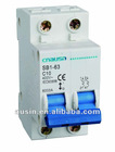 SB1 2p ac 3ka breaking capacity circuit breaker with short circuit and overload protection