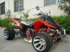 50cc/110cc Quad Bike