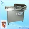 SUS304 DZ-500 Vacuum Packing Machines